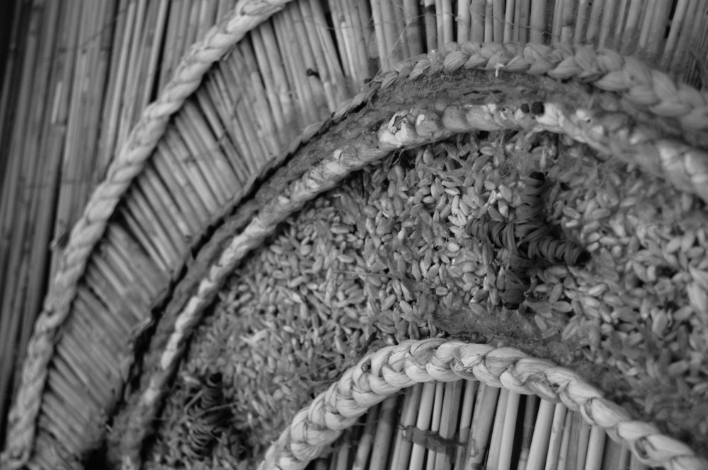 Il dettaglio - Dettaglio di uno dei carri di paglia realizzati dai Battenti di San Rocco